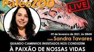 PALEOZOOBR LIVE: QUANDO CAMINHOS INUSITADOS NOS CONDUZEM À PAIXÃO DE NOSSAS VIDAS