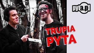 trupia pyta /pyta.pl