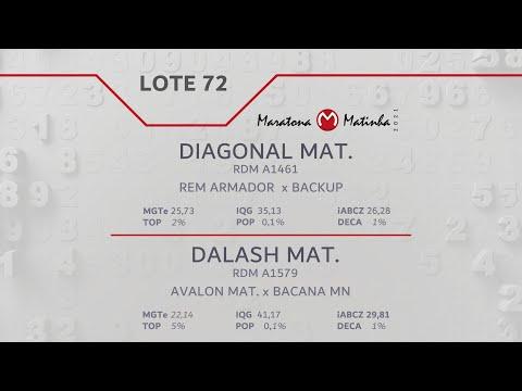 LOTE 72 Maratona Matinha