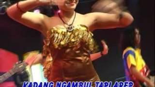 Video Video lagu banyuwangi- denata- di keloni download MP3, 3GP, MP4, WEBM, AVI, FLV Juli 2018