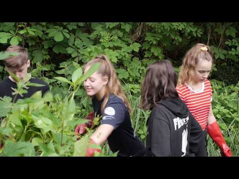 Young Visions - a London Wildlife Trust project