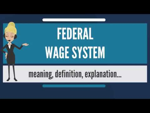 What is FEDERAL WAGE SYSTEM? What does FEDERAL WAGE SYSTEM mean? FEDERAL WAGE SYSTEM meaning