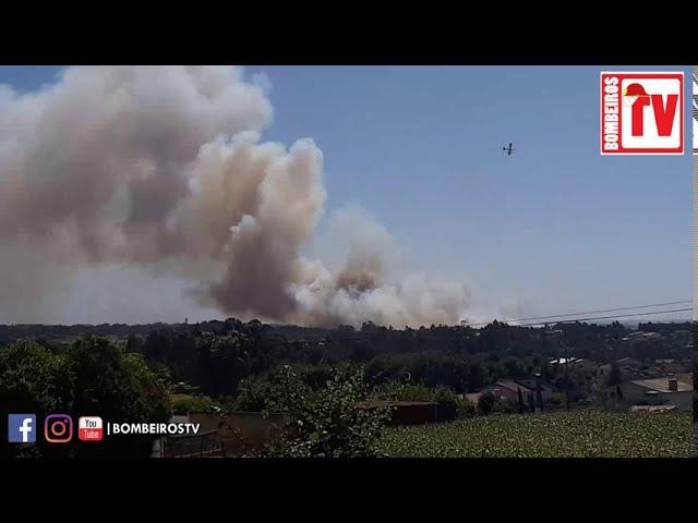 Incêndio Oliveira de Azeméis