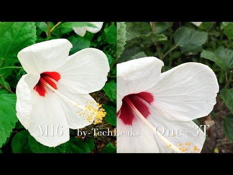 XIAOMI MI6 vs ONE PLUS 3T VIDEO REVIEW