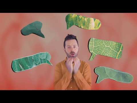Tom Rosenthal - Spring (Official Video) mp3