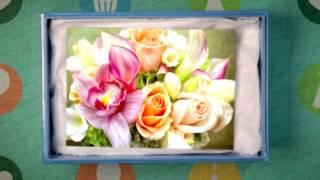 С Днем рождения девочке, девушке | Поздравление с Днем рождения | Видео-открытка