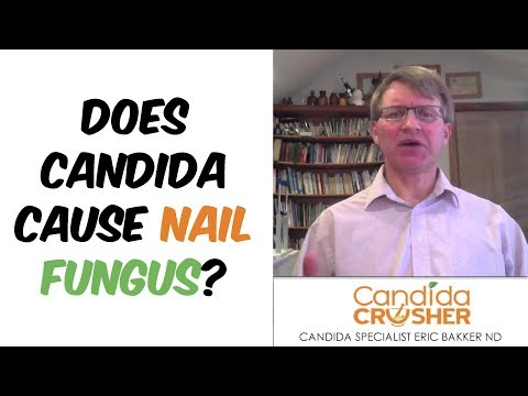 Does Candida Cause Nail Fungus