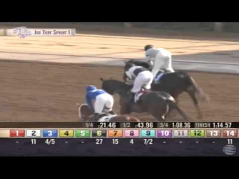 01.11.2014 Santa Anita Park (USA) 1.Race Juvenile Turf Sprint Stakes 2014 - List 1.307 m