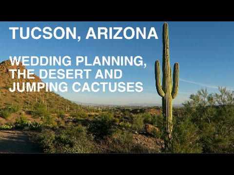 Tucson Arizona Wedding Planning Hiking in the Desert and Jumping