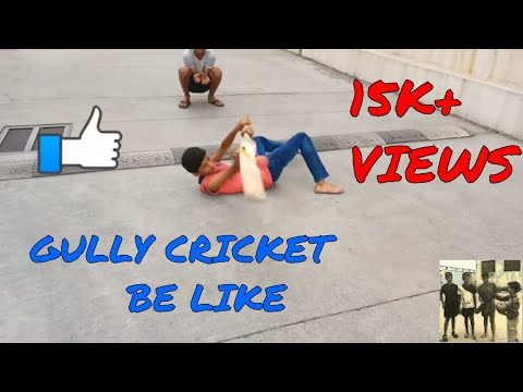GULLY CRICKET!!!People playing gully cricket.Ultimate Viners!!!