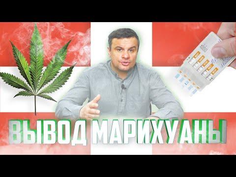 Когда уходит из крови конопля влияние марихуаны на психику