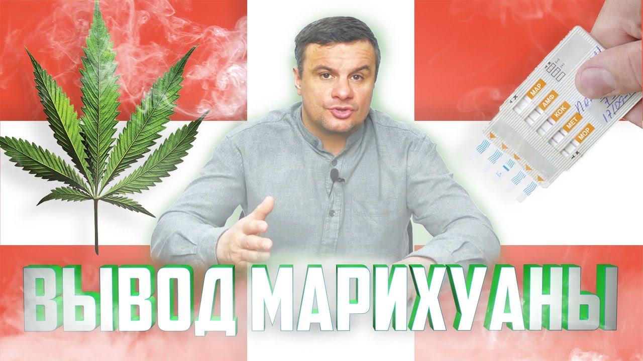 Как вывести марихуану тест как купить марихуану в казахстане