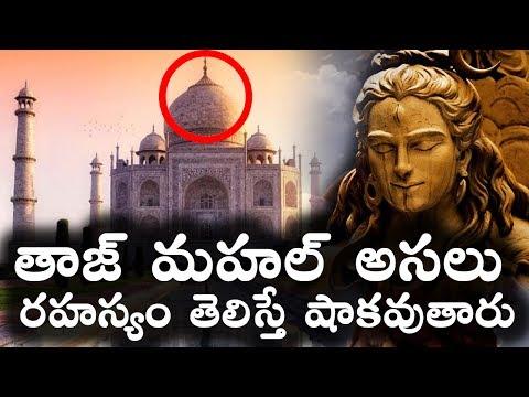 తాజ్ మహల్ అసలు రహస్యం తెలిస్తే షాకవుతారు || Taj Mahal Mystery Revealed in Telugu || T Talks