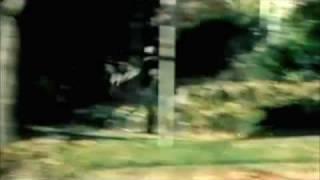 Flogging Molly-Drunken Lullabies Music Video