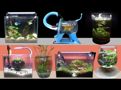 Top 22 Amazing Diy Aquarium Guppy Shrimp Betta Fish - How To Make Fish Tank At Home Ideas Decoration