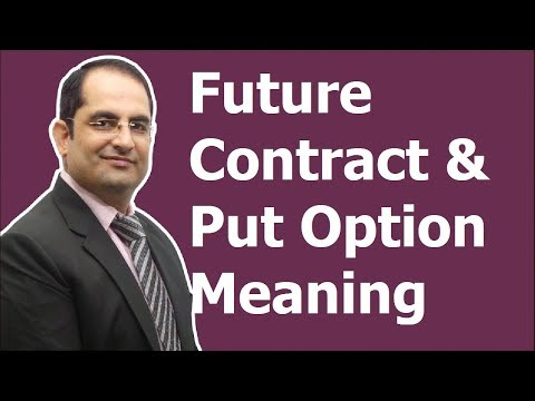 Put option and Future Contract Concept