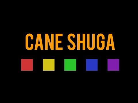 Glass Animals - Cane Shuga | MV Motion Design