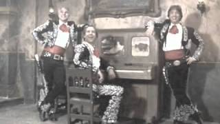 My Little Buttercup - Randy Newman Joaniev ukulele cover
