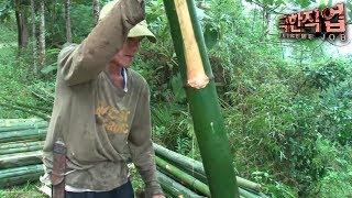[극한직업/Extreme JOB] 필리핀 대나무 작업공 제2부