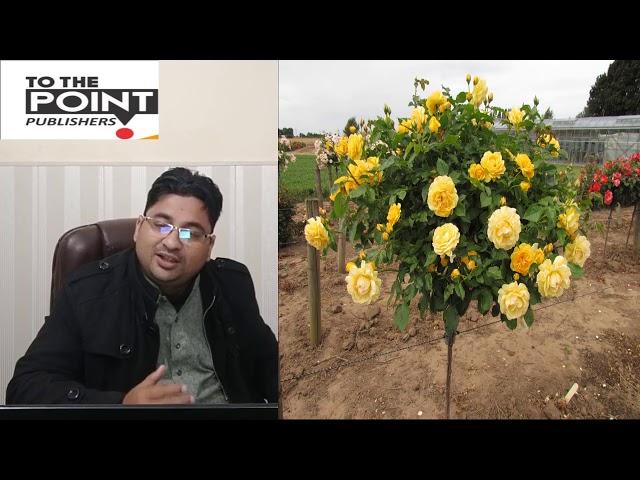 NIGHINGALE AND THE ROSE IN URDU/HINDI