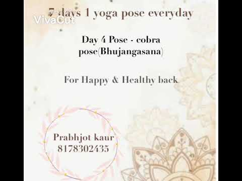 day 4 pose  cobra pose  youtube