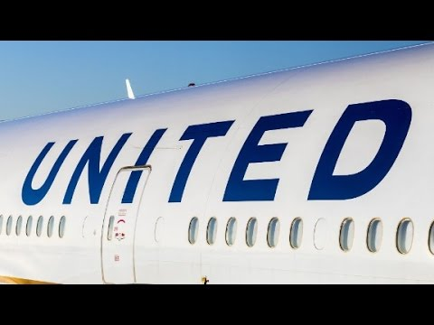 Another scorpion reported on United flight