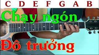 Chạy ngón âm giai Đô trưởng - Tự học guitar solo