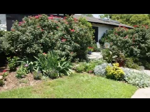 How To Landscape Your Yard Like An English Garden Landscaping Tips Youtube