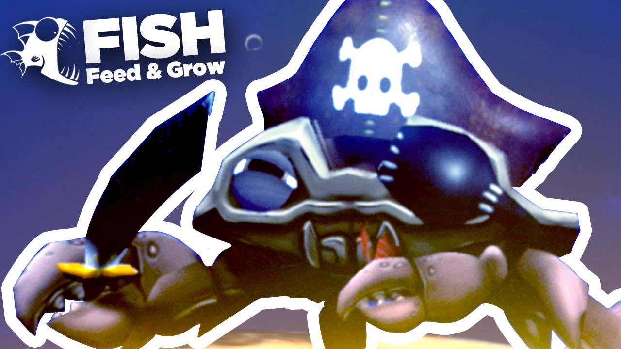 new pirate crab feed and grow ep6 youtube