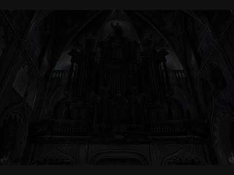 Solitude Forest- Organ Sonata (The Loss of Hope and Purpose)