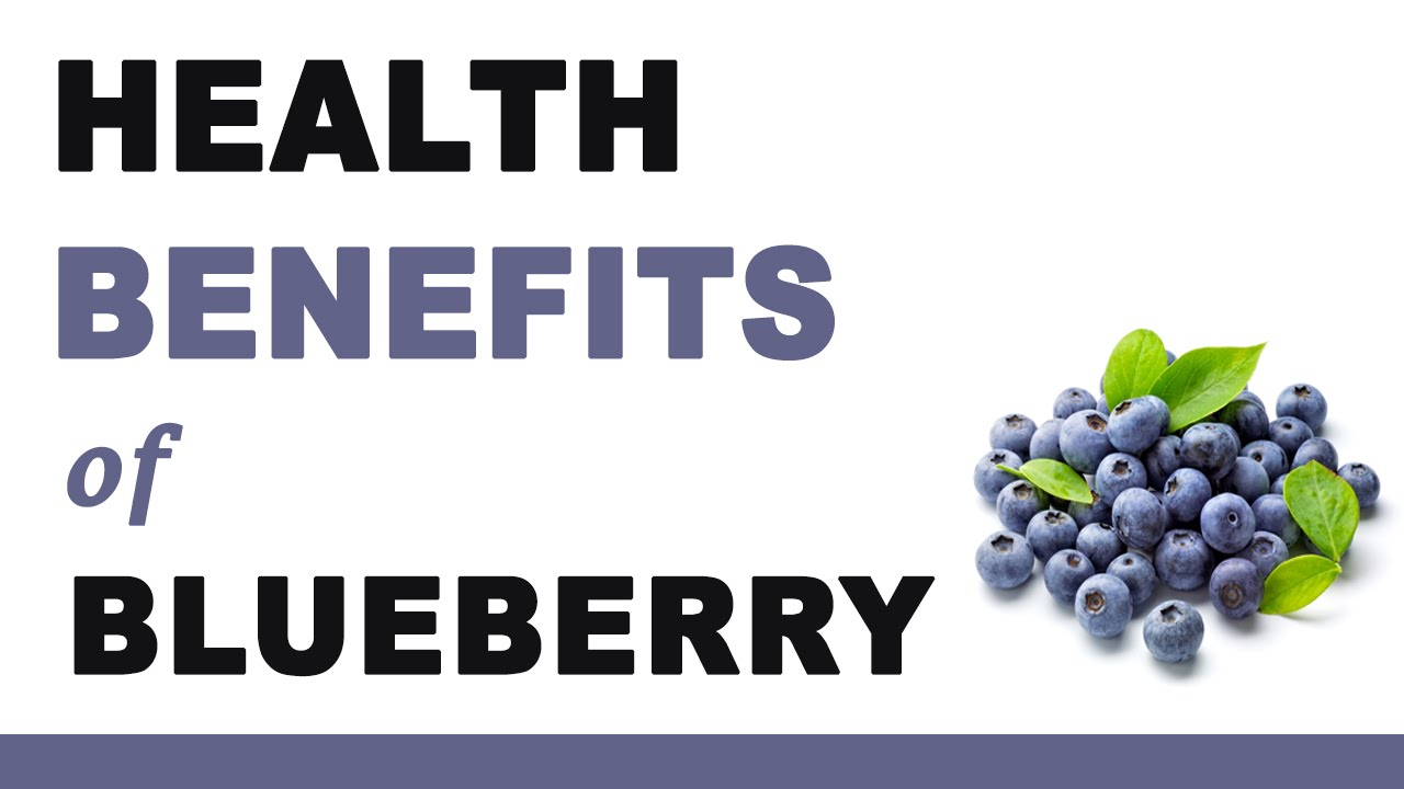 7 Healthy Benefits of Blueberries - NEPA Mom   Blueberry Medicinal Uses