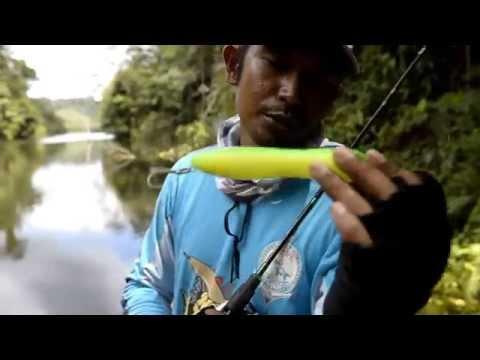 Tutorial Memancing ikan Toman dengan stickbait WTD