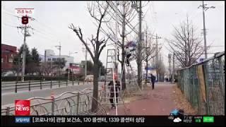 충남방송뉴스 - 서산시, 도로변 화분 정비.가로수 가지…