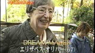 動物保護団体 アーク ARK(ANIMAL REFUGE KANSAI) NPO法人 アニマルレ...
