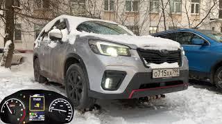 Как гребет Subaru Forester Sport? Вау!