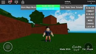 copy like a goku in Dragon ball z rage - roblox