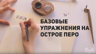 [Видеокурс] Каллиграфия. Базовые упражнения на острое перо. Урок 3