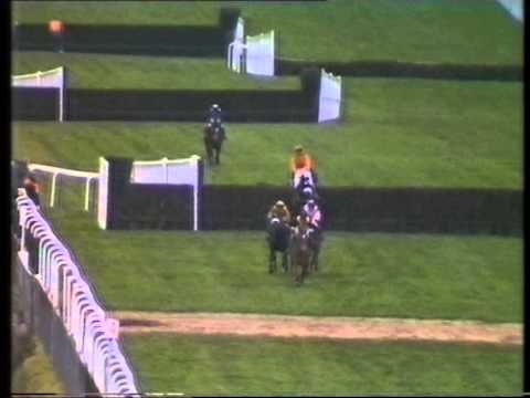 1987 Hurst Park Novices' Chase