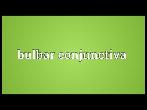 Header of bulbar