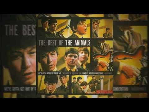 Roadrunner - The Best of The Animals