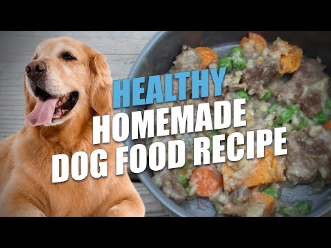 Healthy Homemade Dog Food Recipe
