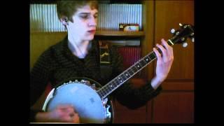 Donkey Kong Country - Aquatic Ambience (Tenor banjo cover)