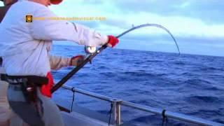 Jigging en La Isla Salvaje CAZA Y PESCA
