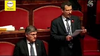 Questione pregiudiziale M5S al Milleproroghe, Endrizzi (M5S)