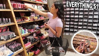 EVERYTHING $1 Come Shopping With Me! SHOP MISS A