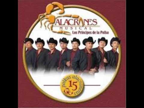 Alacranes Musical Polkeando El Oro