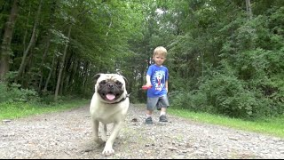LITTLE BOY WALKING HIS DOG FOR THE FIRST TIIME