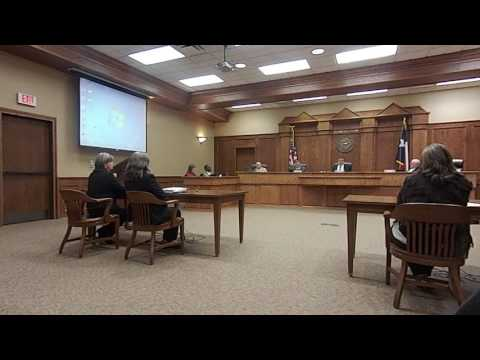 #8 County Commisioner's Court considers web access to County consolidated case database