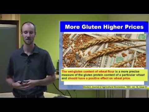 Pain from the Grain - Going Gluten Free by Dr. Andrew Rostenberg