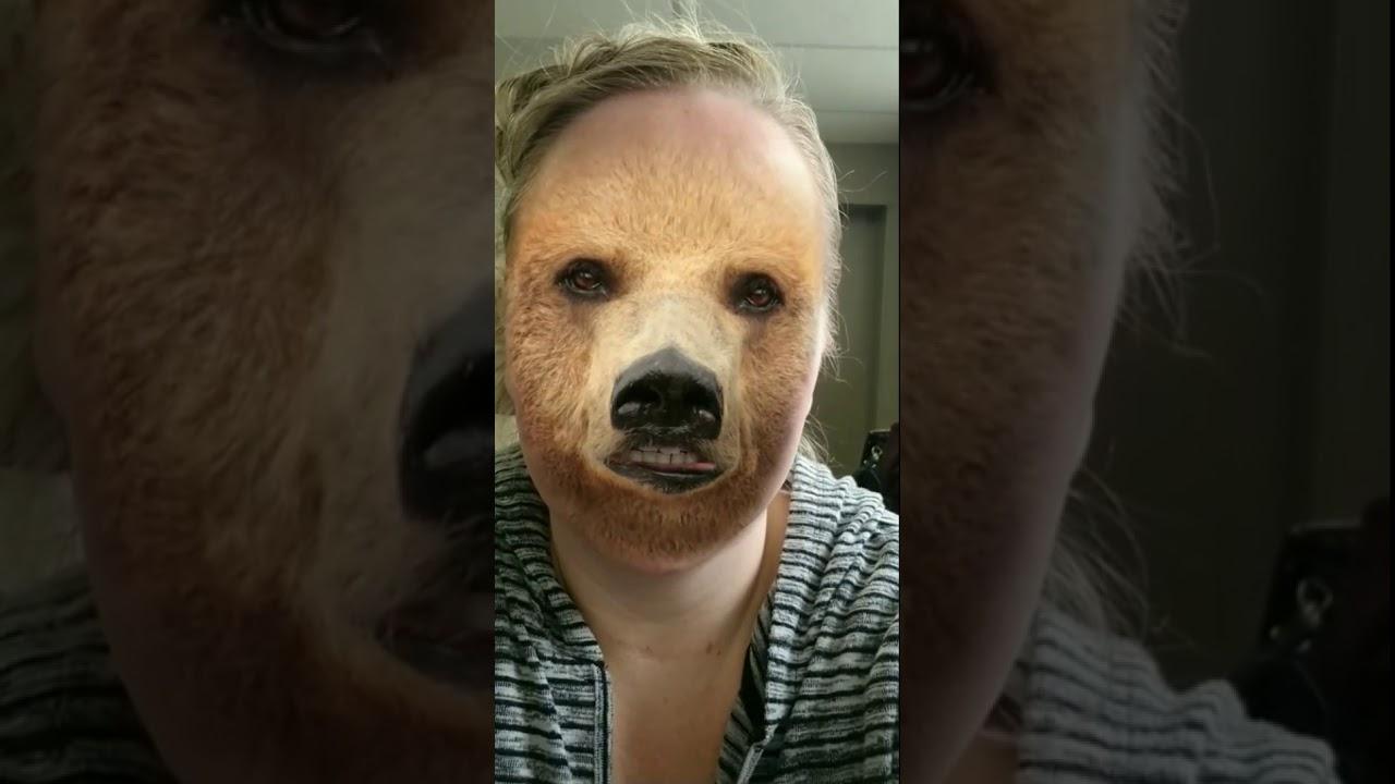 Bears hibernate, waterproof mascara, jury duty, funny Snapchat